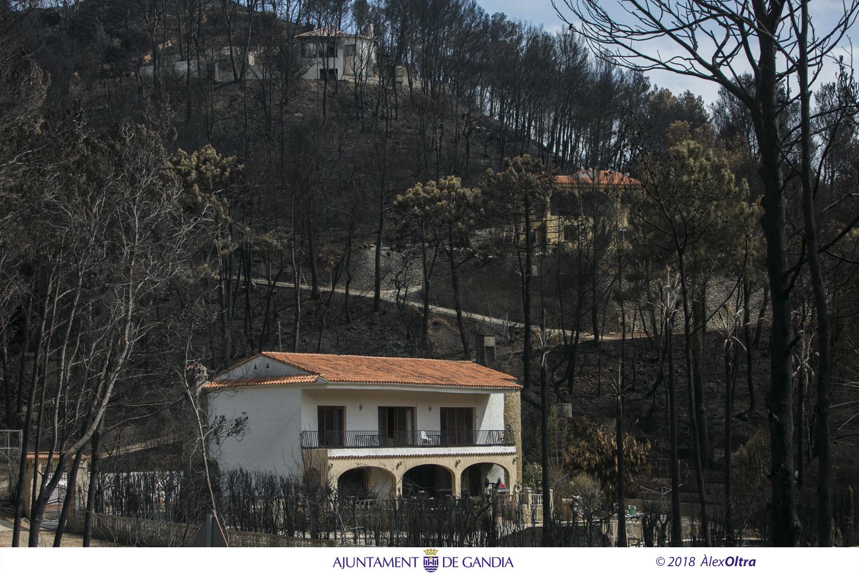 Restablert el subministrament elèctric, d'aigua i clavegueram en Montesol i Montepino