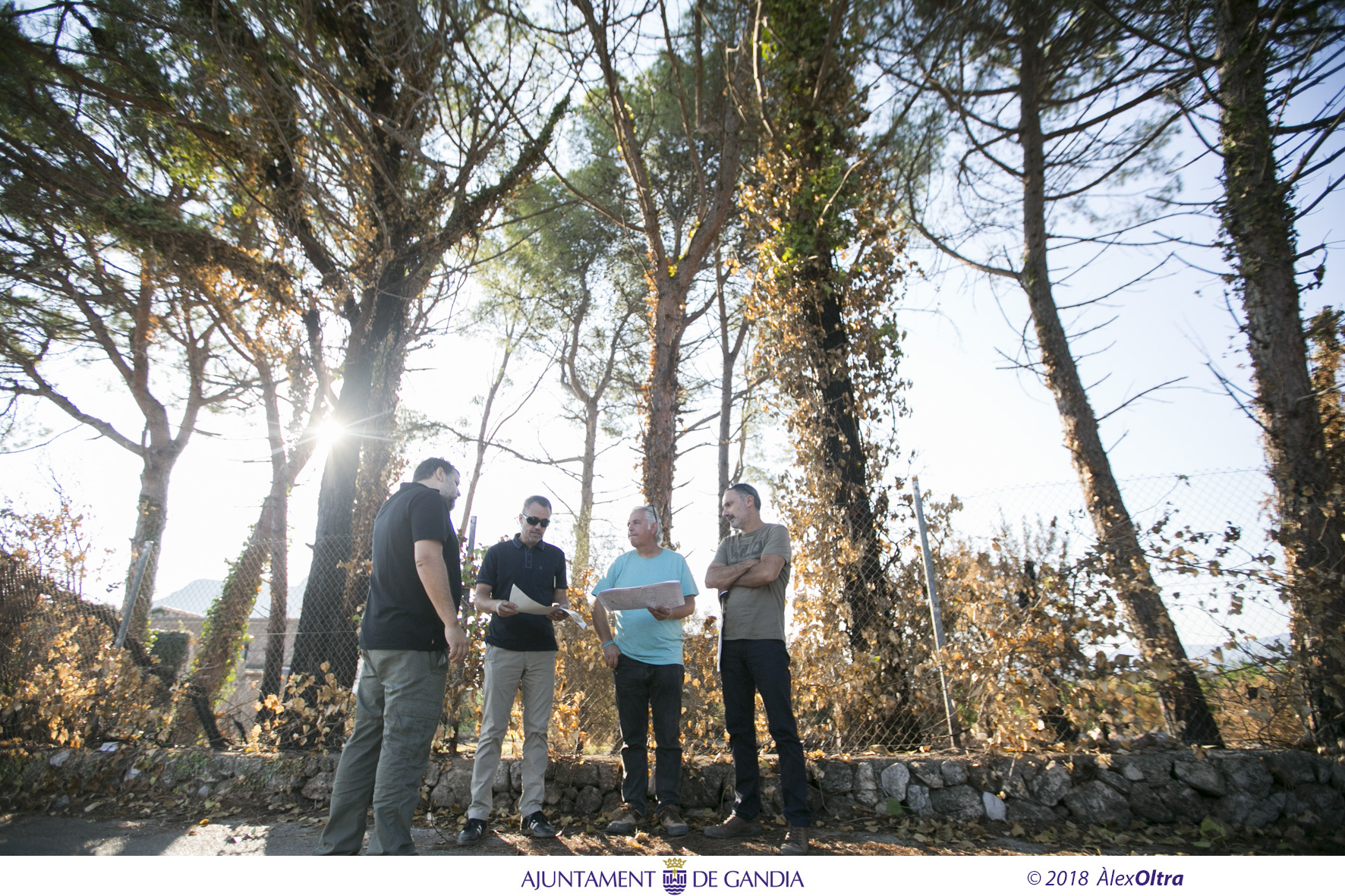 Comencen els treballs de postemergència a les zones afectades per l´incendi forestal