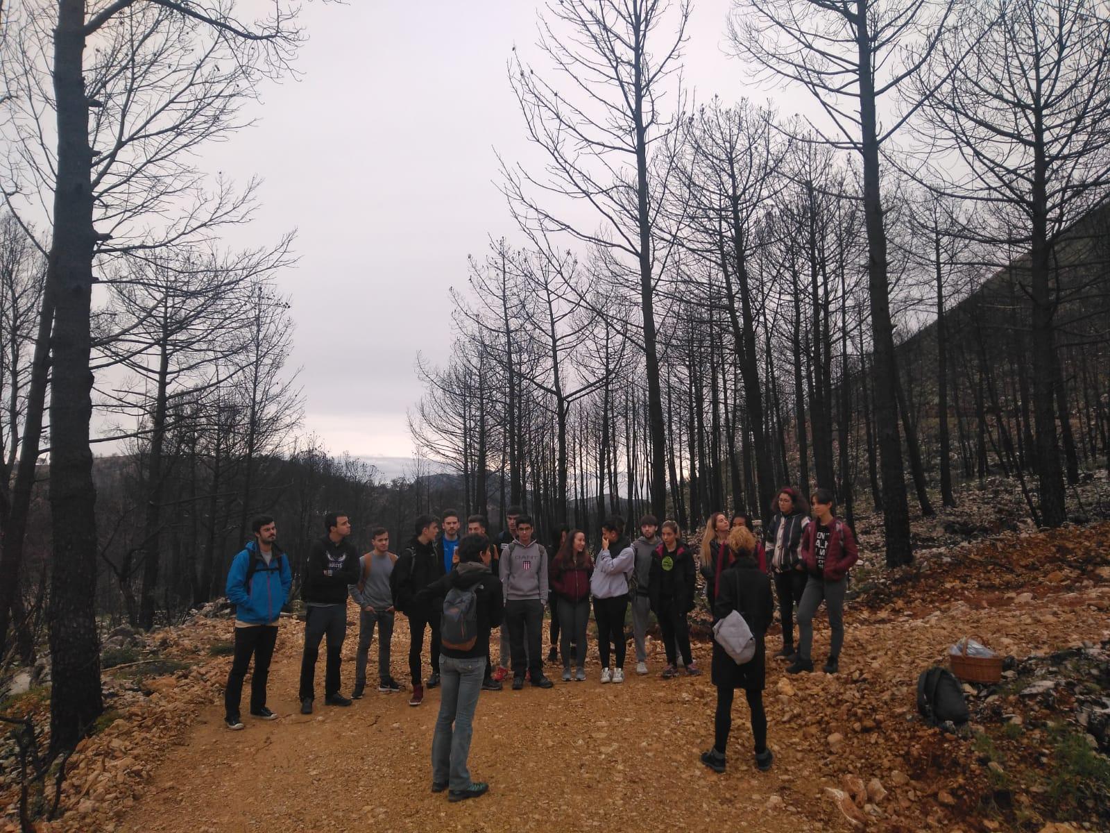 L'alumnat de Ciències Ambientals del Campus de Gandia (UPV) s'incorpora en la primera jornada de voluntariat