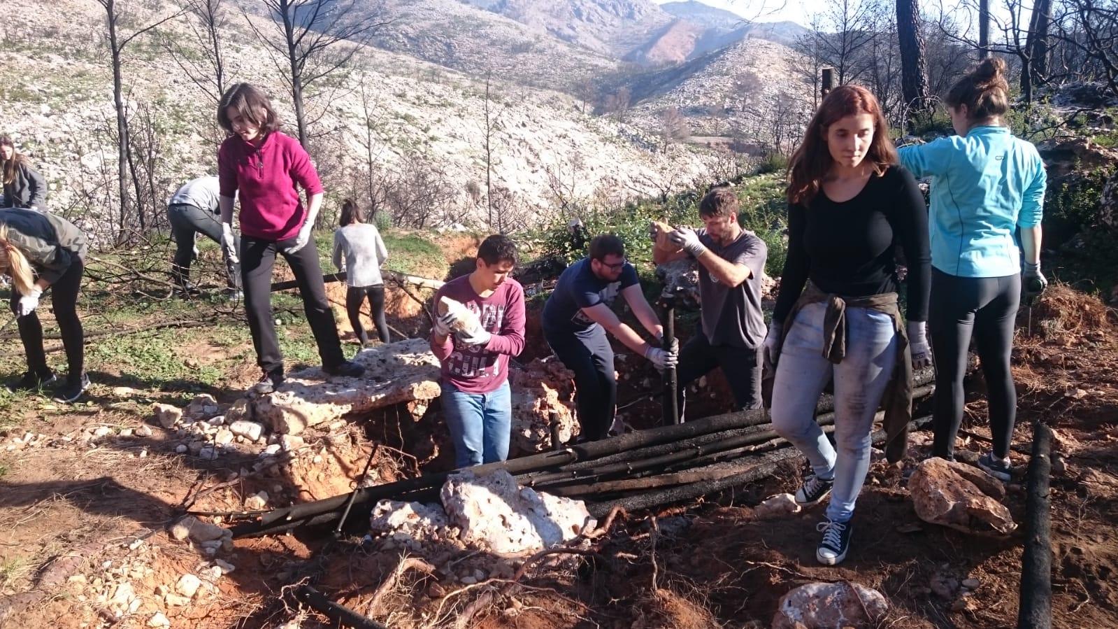 L'alumnat de 4t d'Ambientals construeix una fagina al barranc del Borrell