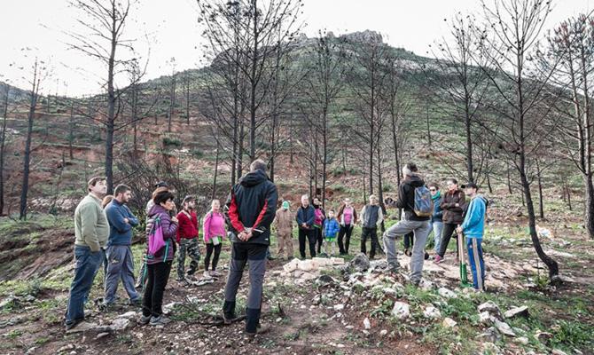 Gandia anima a los colegios a participar en 'Marxuquera Verda' para paliar los efectos del incendio