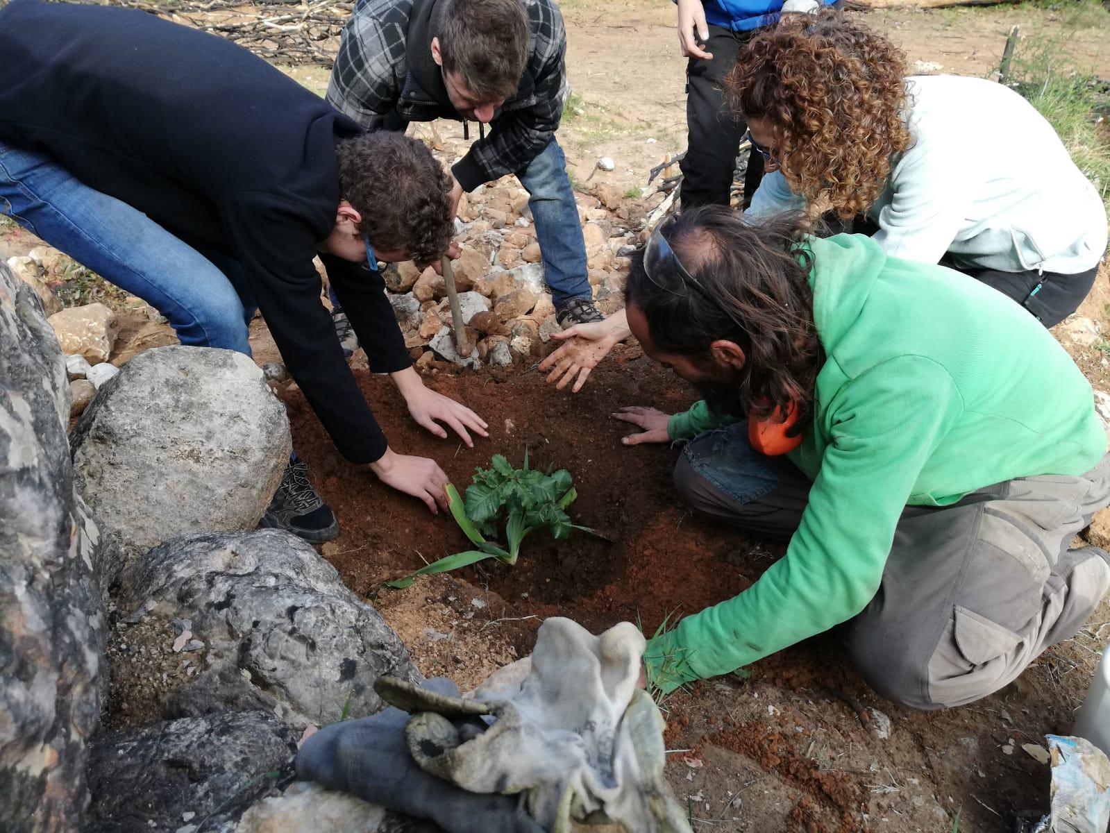 Continuem amb la preparació dels jardins forestals