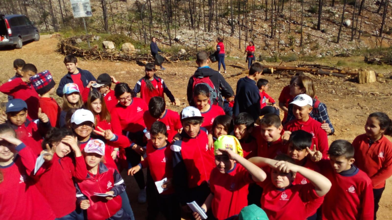 El CEIP Cervantes de Gandia col·labora amb Marxuquera Verda